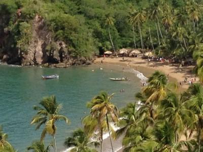 Venezuelan beach cocoa region